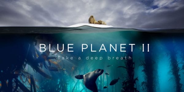 How to Watch Blue Planet 2 outside UK Live Online