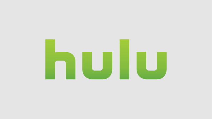 How to Watch Hulu in UAE?