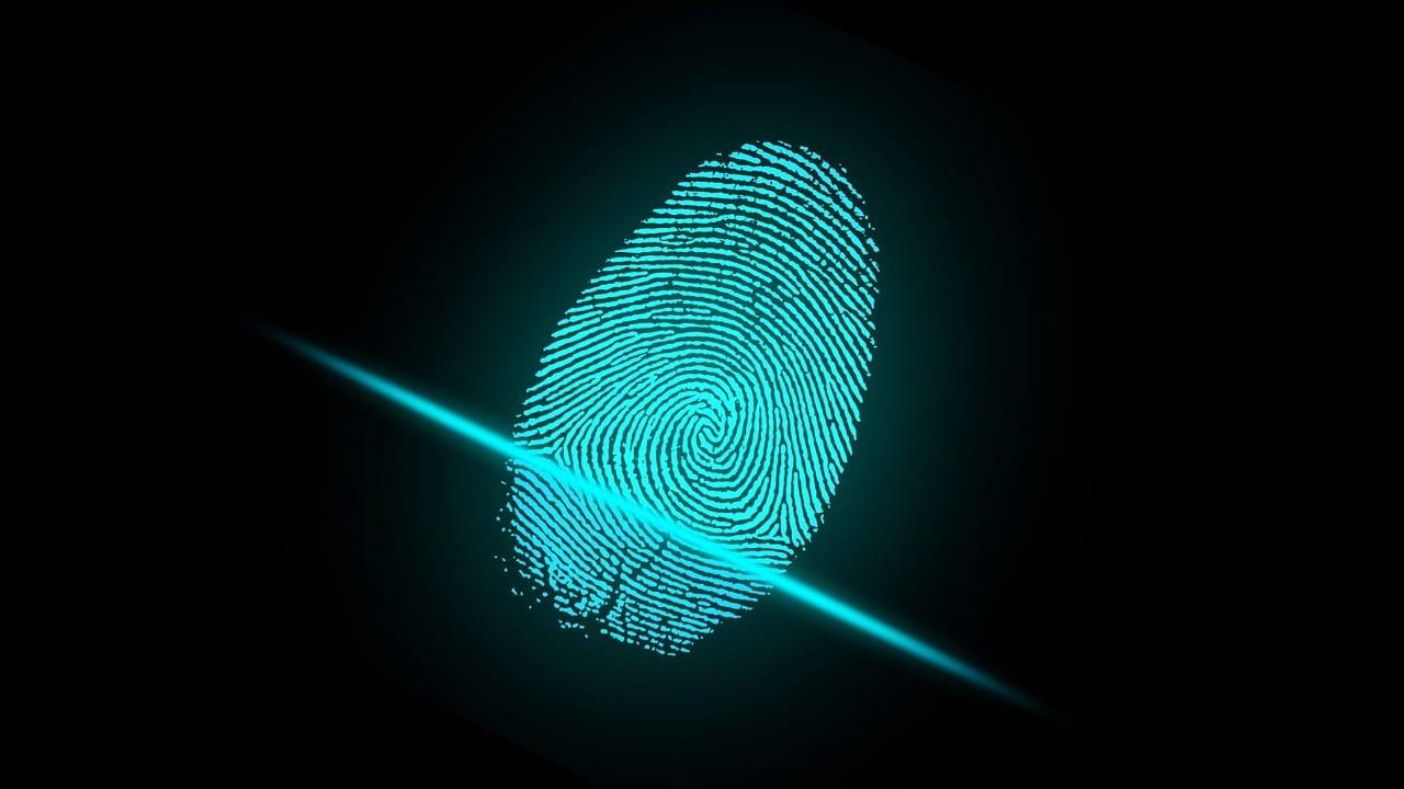 Do Biometrics Pose a Risk to Privacy?