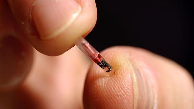 Rice-Sized Microchips in Your Thumbs? Sweden Says Yes!