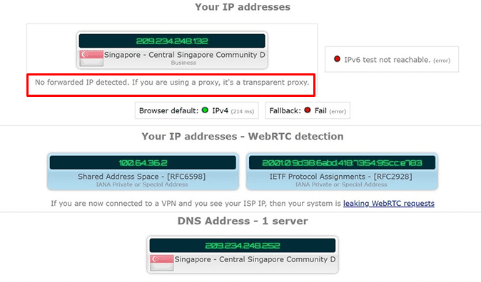 SurfShark DNS Leak Test