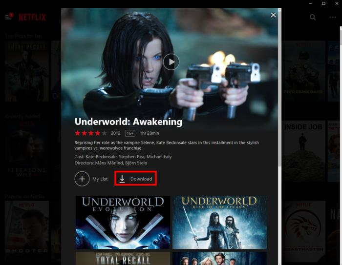 Netflix Windows Download